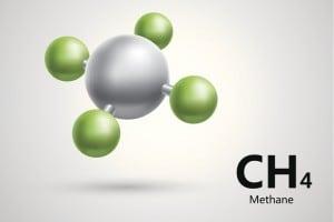 Idrocarburi alifatici e aromatici