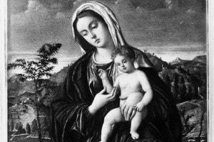 Madonna col bambino di Bellini