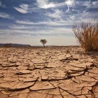 Siccità: un problema crescente