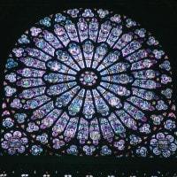Il ricco rosone di vetri policromi di Notre Dame