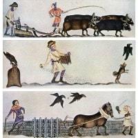 L'uomo medievale: caratteristiche, mentalità, paure