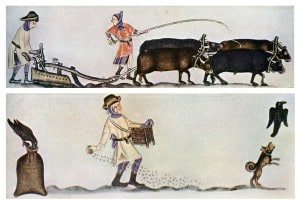 Agricoltura nell'alto Medioevo: illustrazione