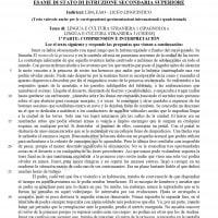 Traccia spagnolo seconda prova Maturità 2019