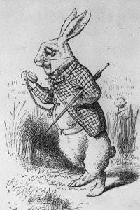 Coniglio bianco. Illustrazione di John Tenniel