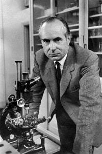 Andrew Fielding Huxley, fratello di Aldous