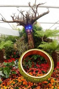 Il giardino di Tolkien al Chelsea Flower Show al Royal Hospital Chelsea