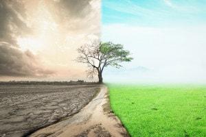Un ciclo di webinar gratuiti per parlare di cambiamento climatico