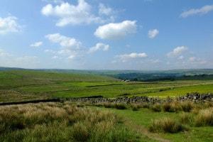 Il paesaggio tipico della brughiera inglese