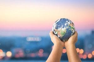 Lotta al cambiamento climatico: l'iniziativa green di un istituto di Foggia