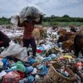 Discarica in mezzo ai pascoli in Indonesia