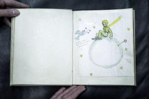 Una immagine dal libro de Il piccolo principe