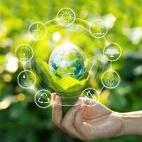 Ecosostenibilità: le iniziative green per le scuole del Lazio