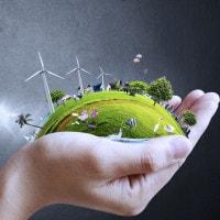 Professioni del futuro: perché puntare sui green jobs