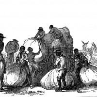 Schiavismo: significato e storia della schiavitù