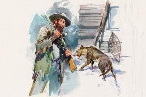 Illustrazione per Il richiamo della foresta di Jack London