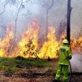 Un pompiere allavoro