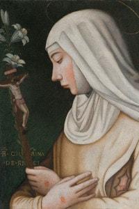 Santa Caterina da Siena. Collezione del Museo del Cenacolo di Andrea del Sarto, Firenze