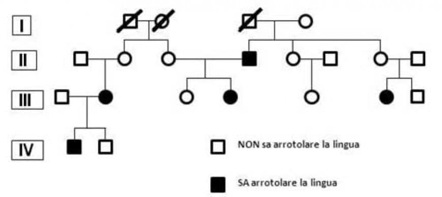 """L'albero genealogico riportato in figura rappresenta un carattere a trasmissione mendeliana nell'uomo: """"capacità di arrotolare la lingua"""". Qual è l'allele dominante?"""