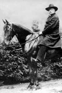 Otto von Bismarck, 29 luglio 1890