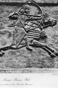 Re assiro Assurbanipal