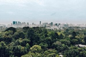 Città e periferie: tema