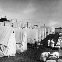 Influenza spagnola: storia, caratteristiche, sintomi e come sparì