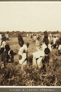 Ascari impegnati nella costruzione di strade. Colonialismo italiano in Africa orientale, XIX secolo