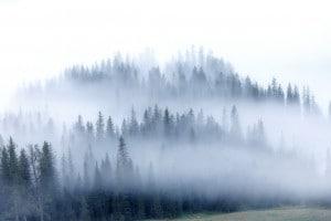 Nebbia è una poesia di Giovanni Pascoli