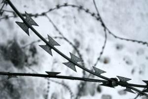 Shoah: tesina sullo sterminio degli ebrei