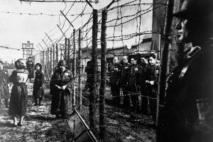 Lo sterminio degli ebrei: riassunto