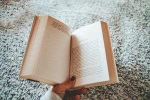 Capitolo 17 de I promessi sposi: analisi e figure retoriche