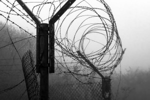 Il regime totalitario: significato e caratteristiche
