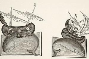 I navigatori che hanno scambiato la schiena di una balena per un'isola, si siedono su di essa per cucinare il cibo. Dopo una miniatura in un manoscritto del X secolo Bestiaire d'Amour di Richard Furnival