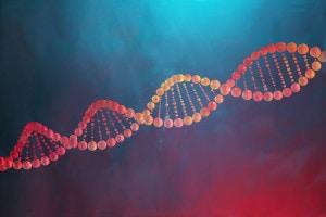 La duplicazione del DNA: riassunto e spiegazione